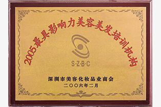 深圳市化妆品业商会颁发最具影响力培训机构