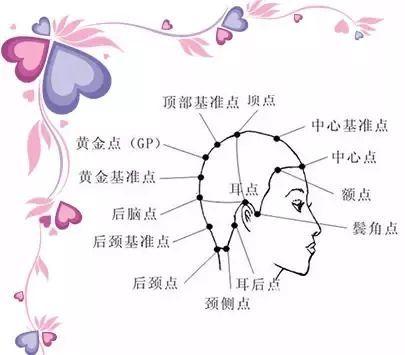 发型基本原理和美发的基础小知识